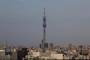 20110410188