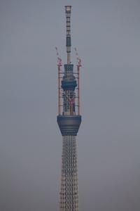 20110410189