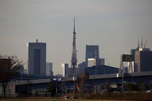 20111210291